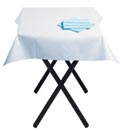Cool Mint napkins with White table cover